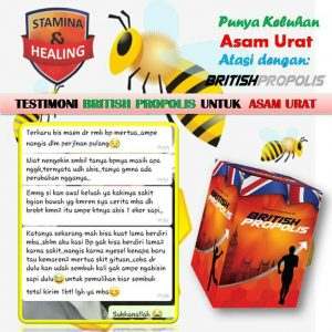 Distributor British Propolis